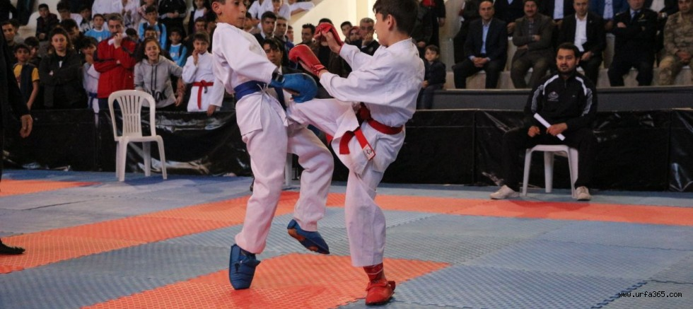 Bozova Karateyle Şenlendi