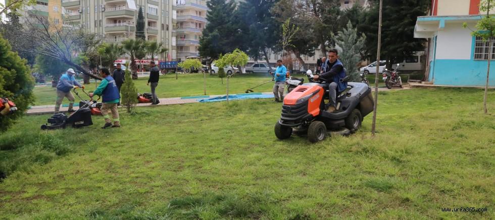 Haliliye Belediyesi İle Parklar Yaza Hazır