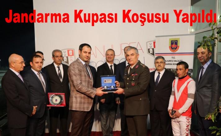 Jandarma Kupası Koşusu Yapıldı